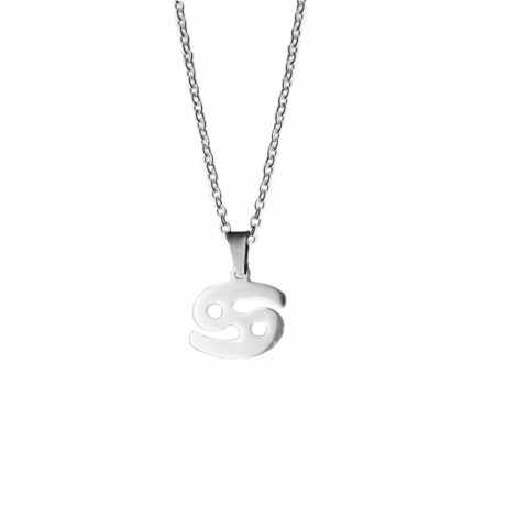 cancer-stainless-steel-necklace-hellaholics