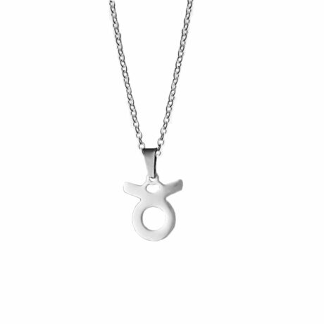 taurus-stainless-steel-necklace-hellaholics